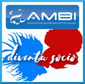 logo-iscriviti